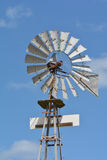 Asp i Colorado Arkivbild