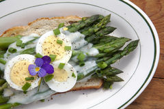 Asparagas On Toast With Sliced Eggs And Béchamel Sauce Stock Photo
