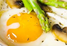 Asparagi with fried egg Stock Images