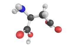 Asparaginowy kwas, także znać jako aspartate, jest amino kwasem t ilustracji