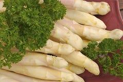 Asparago bianco Immagine Stock