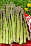 Asparago fresco Immagini Stock