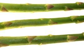 asparagusów łodygi Zdjęcie Stock