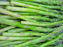 Asparagus. Salted asparagus ready to be put on grill royalty free stock photography