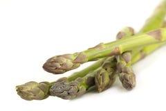Asparagus. Stock Image