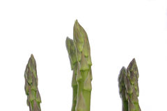 Asparagus. Spears isolated with reflections Royalty Free Stock Image