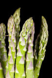 Asparagus. Spears on black background,  officinalis is a spring vegetable, a flowering perennial plant species in the genus royalty free stock photo