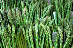 Asparagus. Green asparagus close-up detail royalty free stock photo