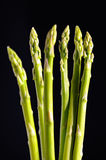Asparagus 4 Royalty Free Stock Photos