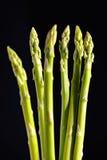 Asparagus 4 royalty free stock photos