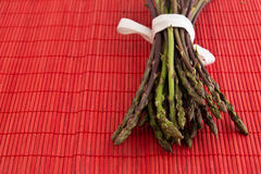 Asparagus acutifolius Stock Photography