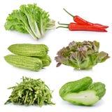 Asparagus, apple, Chayote, Momordica charantia, Green Oak, chili Royalty Free Stock Photos