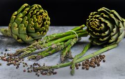 Asparagus and artichokes with herbs stock photography