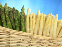 Asparagus in Basket. Green and white asparagus in basket Royalty Free Stock Image