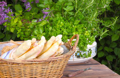 Asparagus basket. And fresh herbs Royalty Free Stock Images