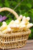 Asparagus basket. Asparagus is a little basket on the garden table Stock Photography