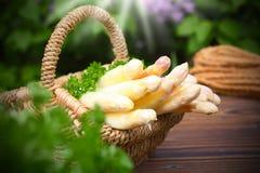 Asparagus basket Stock Images