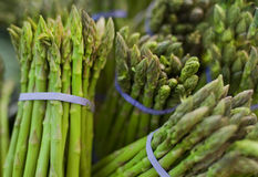 Asparagus in bunch. Asparagus bunched together in market stand Stock Images