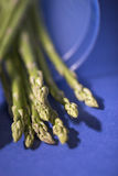 Asparagus. Bunch of asparagus on a blue background Royalty Free Stock Photography