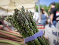 Asparagus Bunch Stock Images