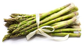 Asparagus. Bunch of raw asparagus tied with a creamy knot isolated on white backgroundn Stock Photos