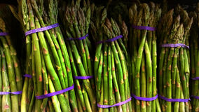 Asparagus bunches Stock Image