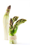 Asparagus bundle Stock Images