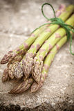 Asparagus bundle Royalty Free Stock Images