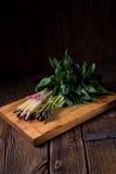 Asparagus bundle Royalty Free Stock Photos