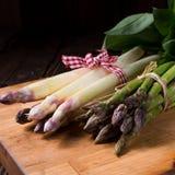 Asparagus bundle Stock Image
