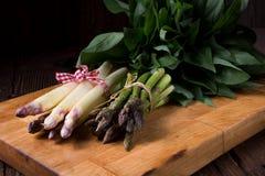 Asparagus bundle Stock Images