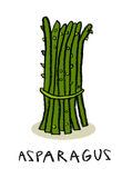 Asparagus bundle Royalty Free Stock Photo