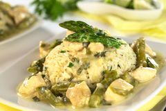 Asparagus Chicken Fricassee Royalty Free Stock Photos