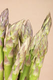 Asparagus close-up. On a light brown background. Studio shot Royalty Free Stock Photo