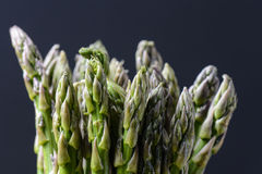 Asparagus Close Up Royalty Free Stock Images