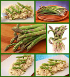 Asparagus collage Royalty Free Stock Photos