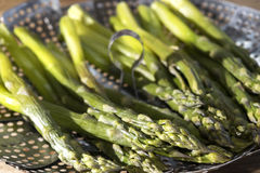 Asparagus cooked steamed Royalty Free Stock Photo