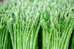 Asparagus. Display of Asparagus in fresh market with selective focus royalty free stock photo