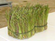 asparagus dziki Obraz Stock