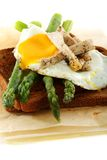Asparagus, egg and turkey on rye bread. Royalty Free Stock Photos