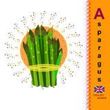 Asparagus. English alphabet. A. The first letter in the alphabet. Card with English words. Education. English Vector Image Royalty Free Stock Photos