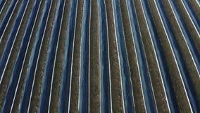 Asparagus field. Aerial of a asparagus field stock video