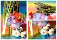 Asparagus, garlic and flowers Stock Images