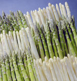 Asparagus Green and White  Royalty Free Stock Photos