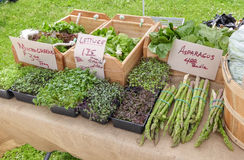 Asparagus and greens at outdoor market Royalty Free Stock Photography