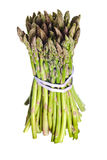 Asparagus isolated Stock Photos