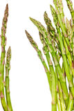 Asparagus isolated Royalty Free Stock Image