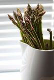 Asparagus in jug D Stock Photo