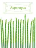 Asparagus karta ilustracji