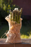 Asparagus at market. Stock Photography